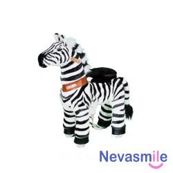 Zebra 3-5 years