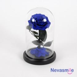 Rose éternelle bleu sous...
