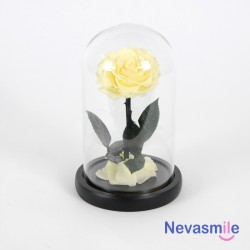 Preserved rose yellow color...