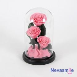 Trois Roses éternelles rose...