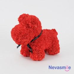 Hondje met rode rozen...