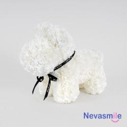 White puppy dog with foam...